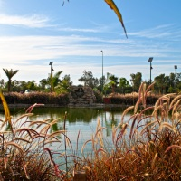 Lakes in the Desert - Yanbu Lakes