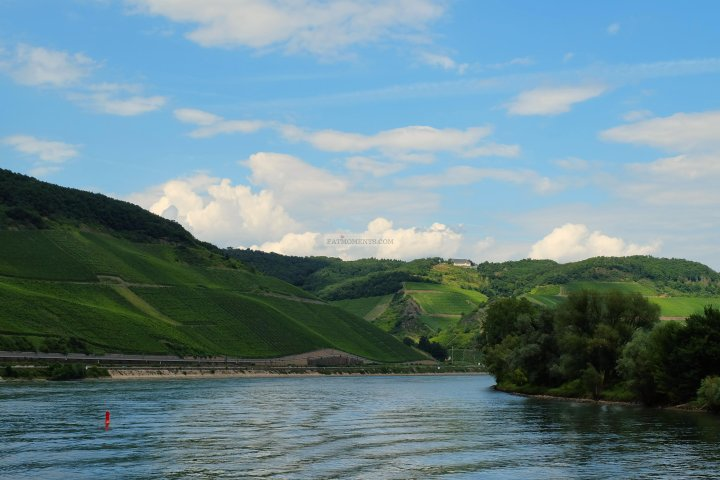 Rhine River Cruise_8