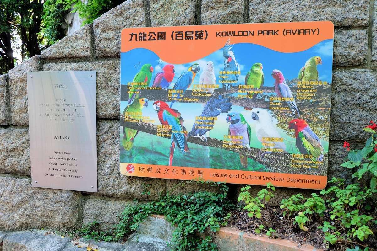 Kowloon Park Aviary