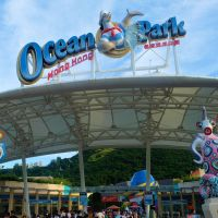 FAT-Moments In Ocean Park Hong Kong