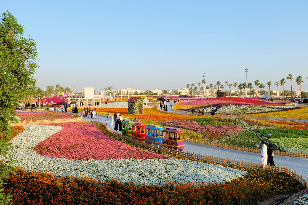Colors of Spring: Yanbu Flower Festival 2018