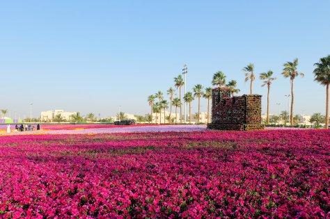 Flower Festival 2018-3