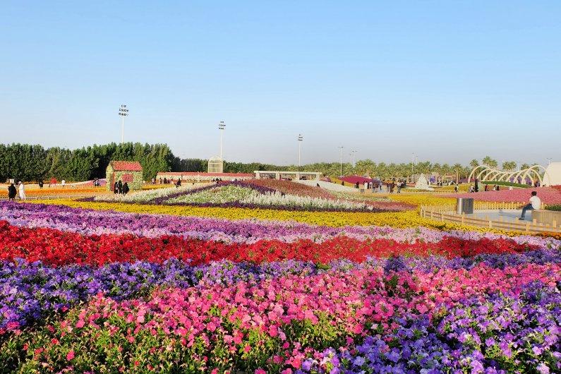 Flower Festival 2018-7