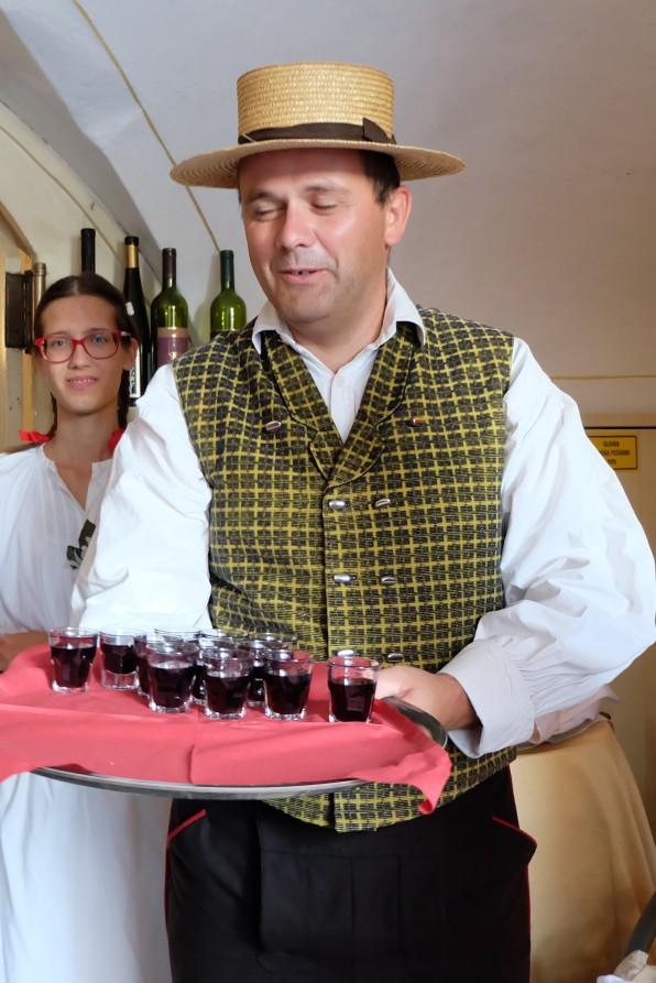 Slovenian Dinner Welcome Drinks