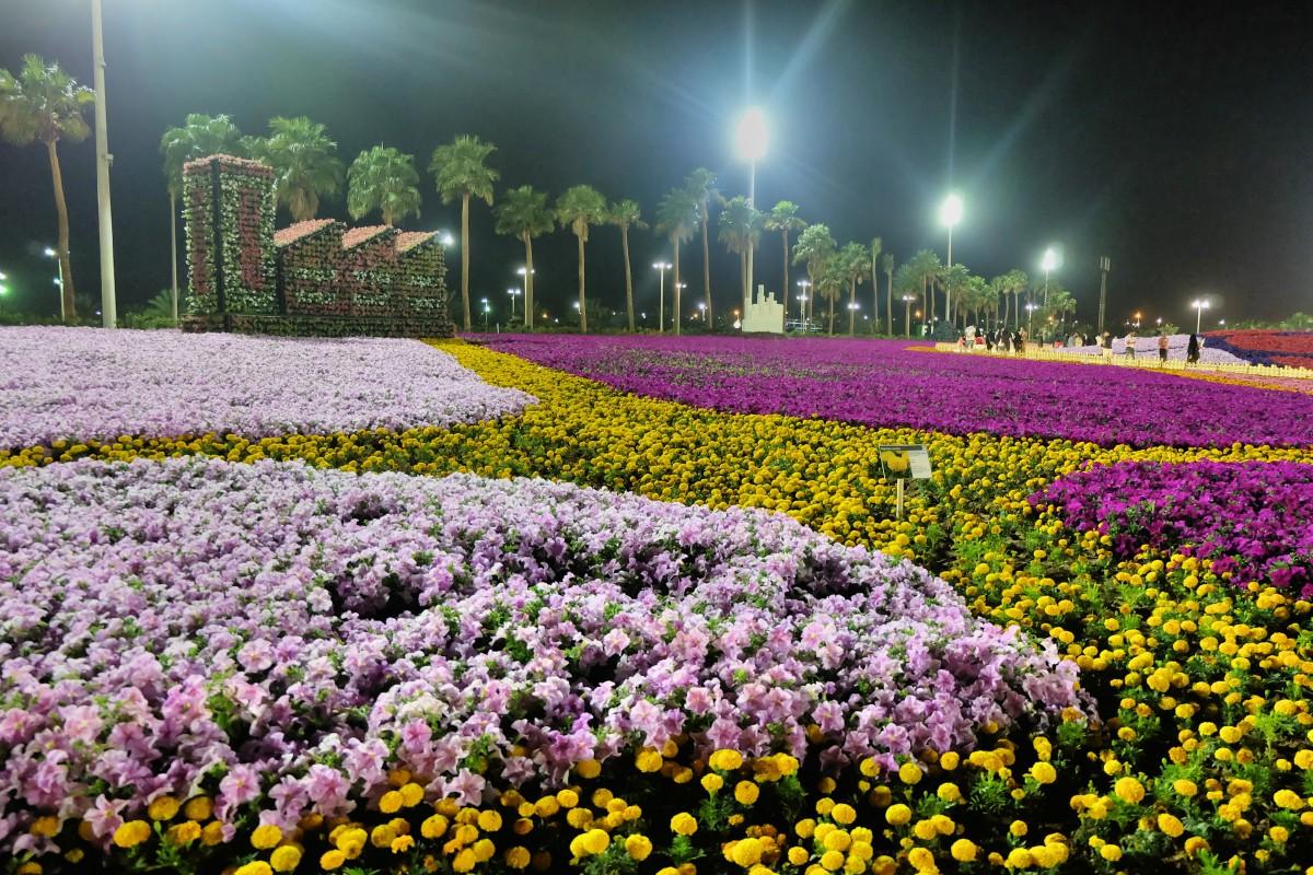Yanbu Flower Festival 2018-12