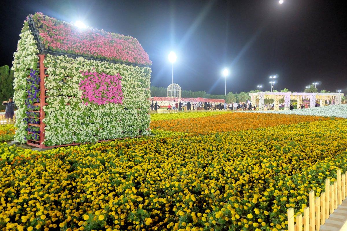 Yanbu Flower Festival 2018-16