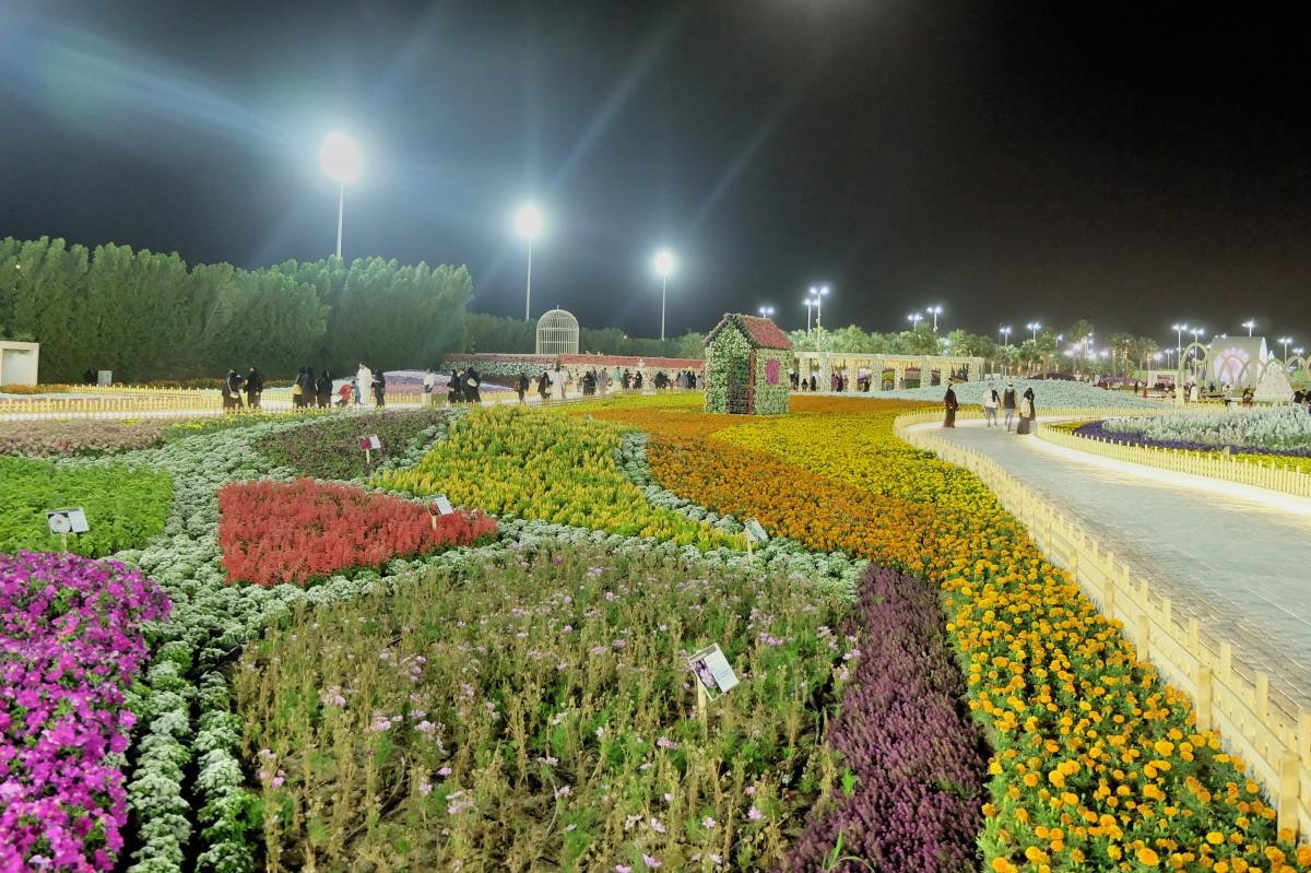 Yanbu Flower Festival 2018-17