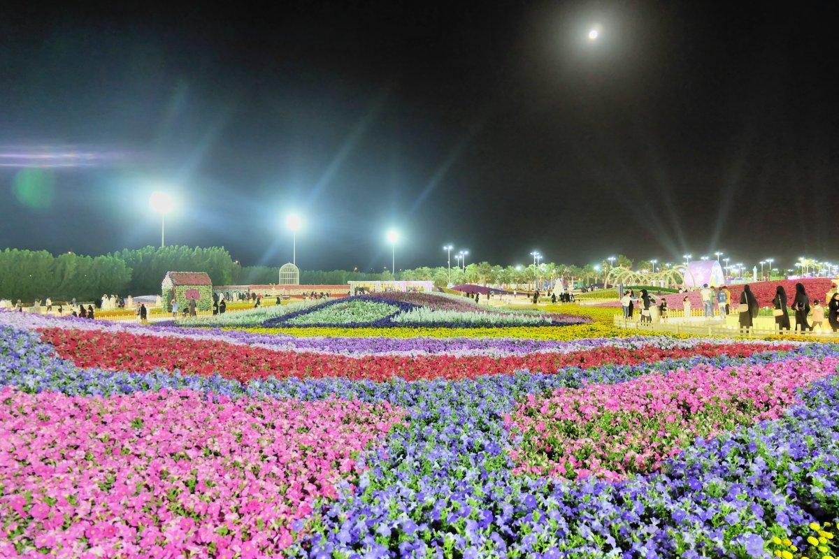 Yanbu Flower Festival 2018-19