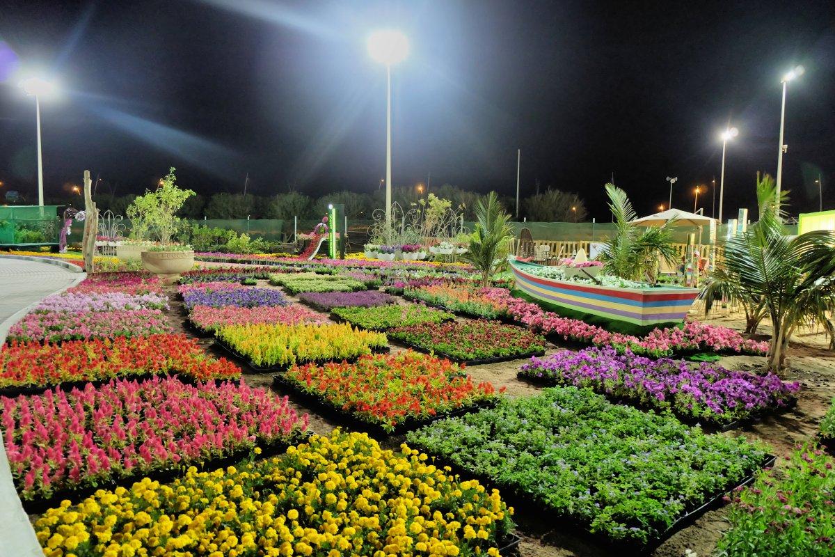 Yanbu Flower Festival 2018-4