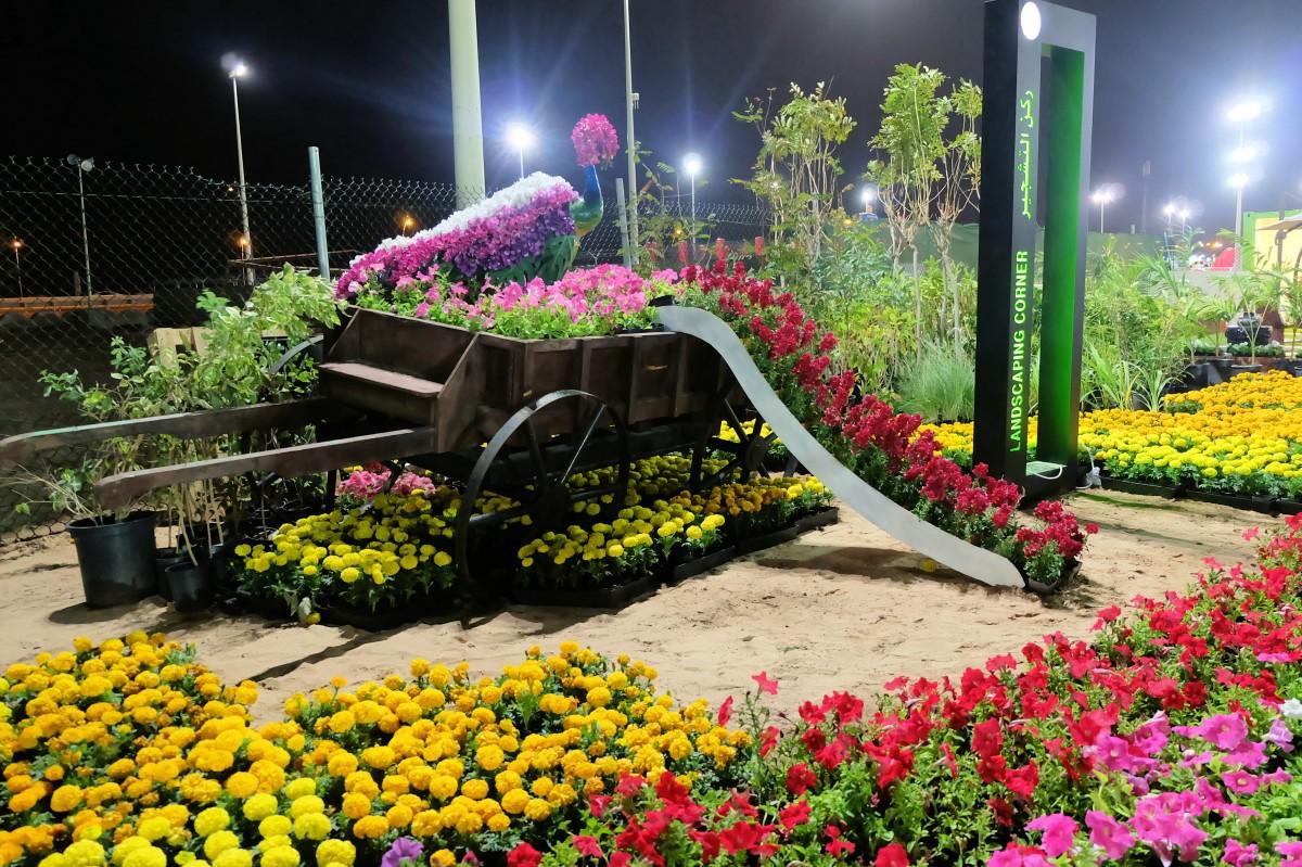 Yanbu Flower Festival 2018-6