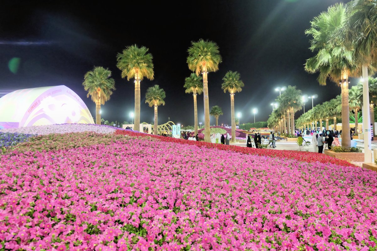 Yanbu Flower Festival 2018-8