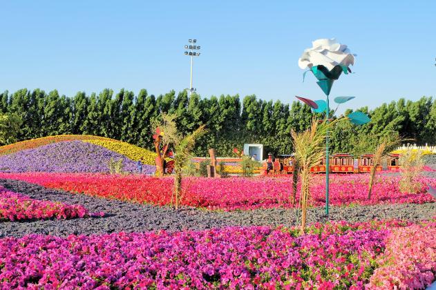Yanbu Flower Festival 2019